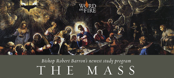 Bishop Robert Barron's The Mass